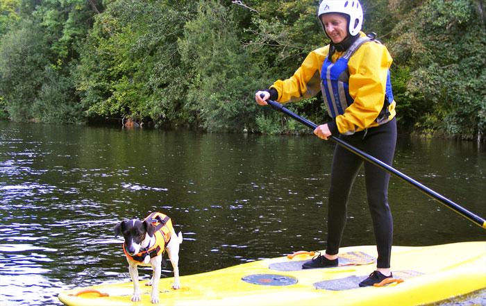 Doggy paddle Boarding
